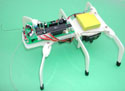 HEXAVOIDER Programmable Robot Kit (solder version)