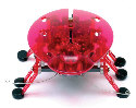 HEXBUG-ECHO RED